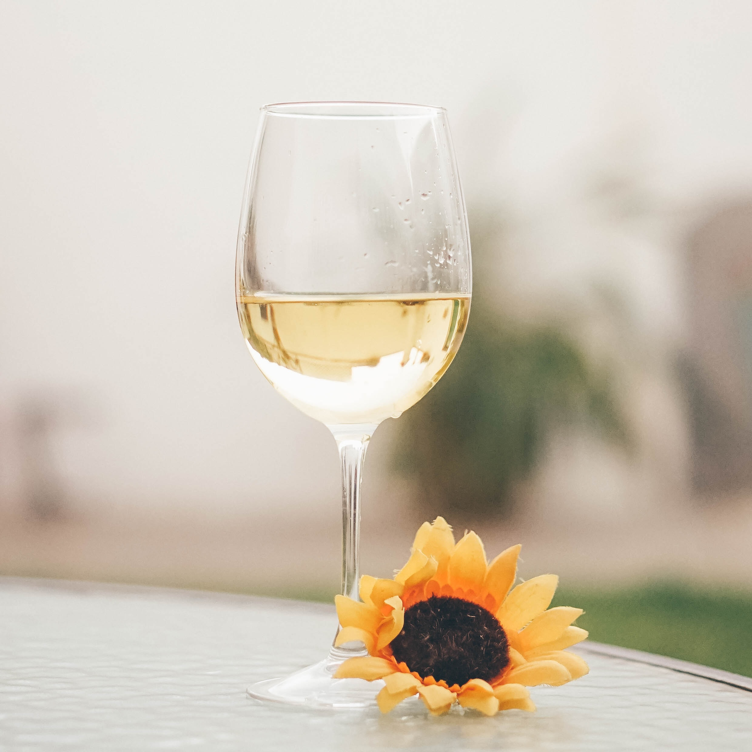 A glass of chardonnay wine near a flower