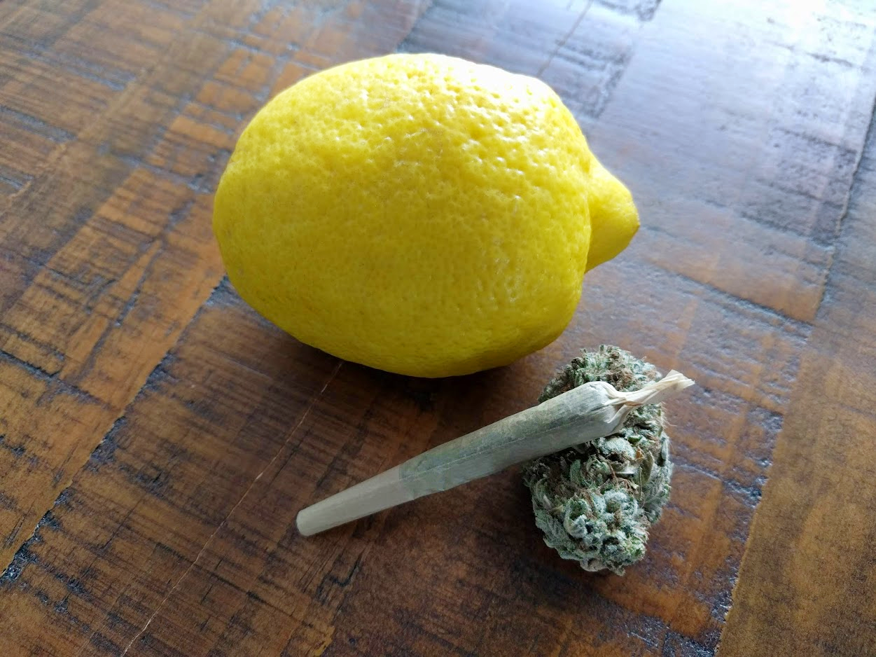 A cannabis flower and joint next to a lemon