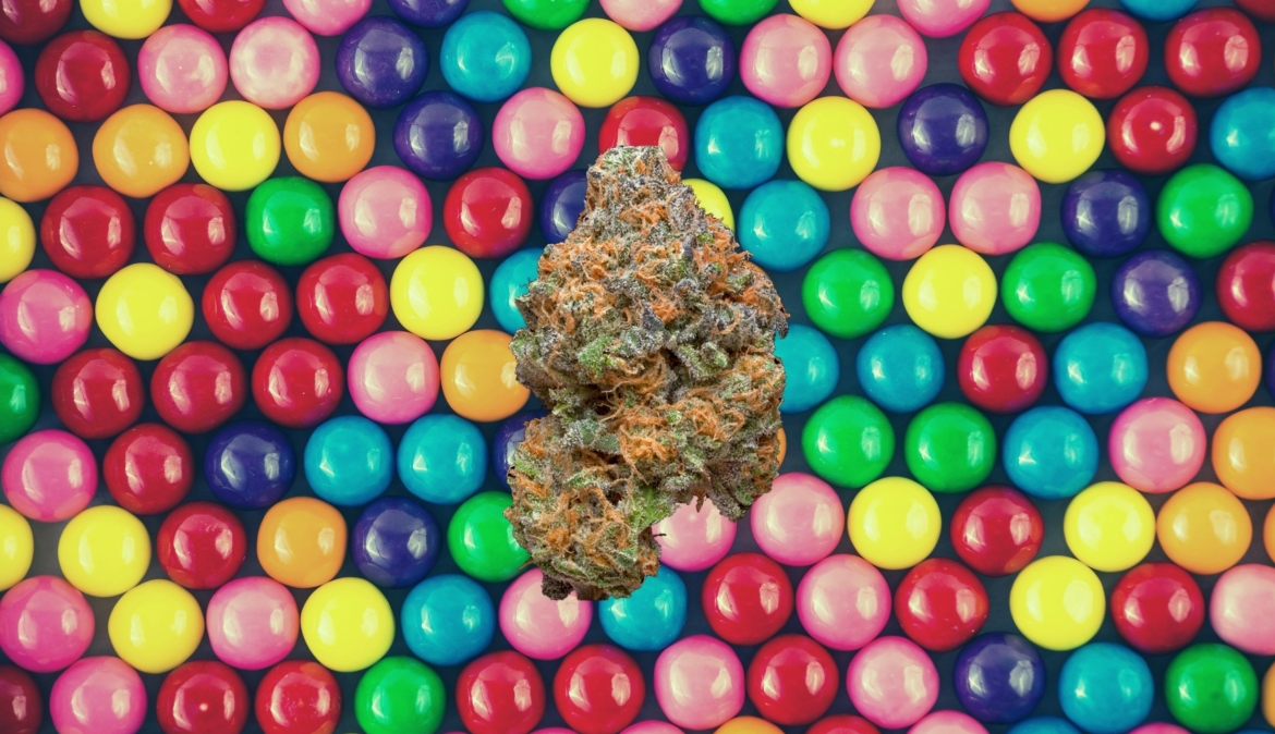 A cannabis strain hovers above a background of symmetrical gumballs