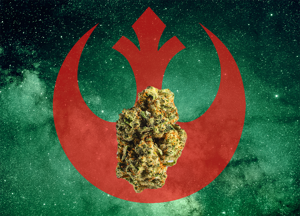 A wookie pebbles nug in front of the rebel alliance logo